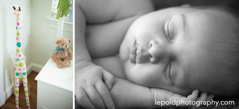 Newborn Photographer NOVA lepold photography 001