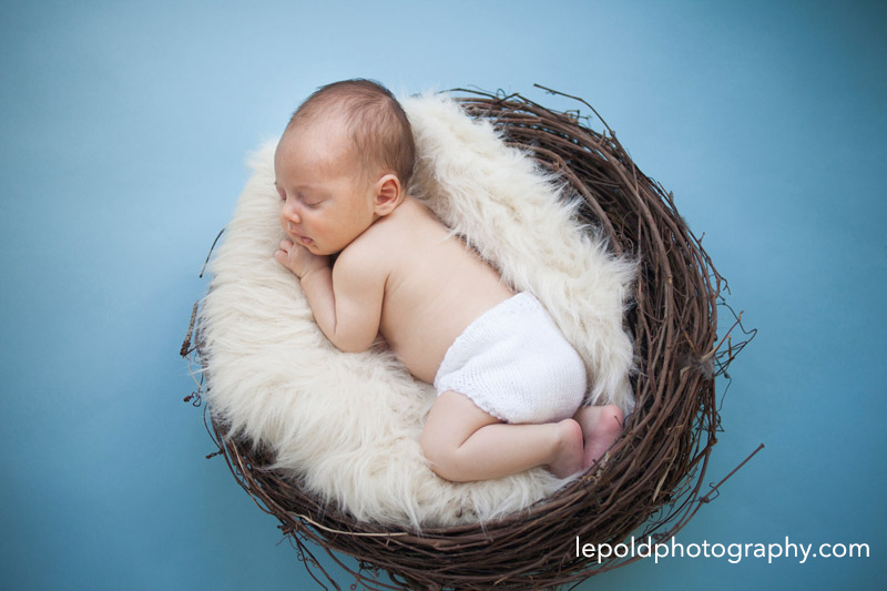 Newborn Photographer NOVA lepold photography 002