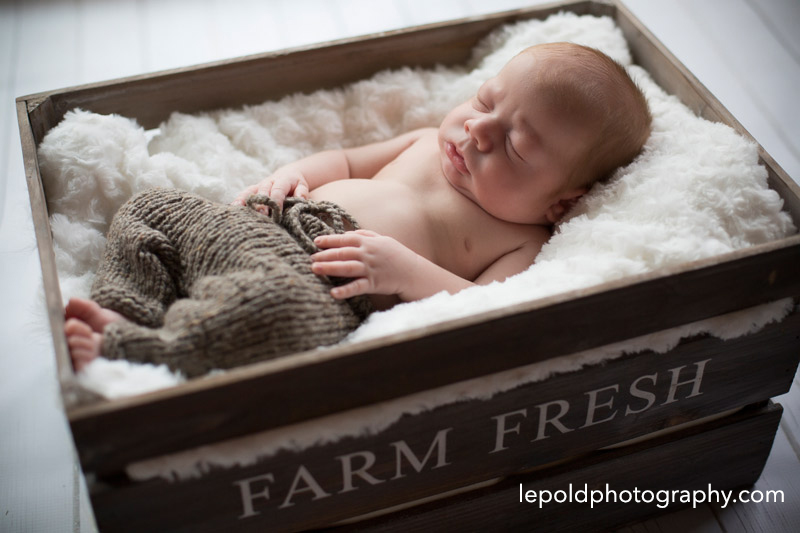 25-Newborn-Twins-LepoldPhotography1
