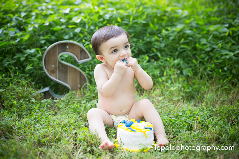 33 Family Photographer NOVA Cake Smash LepoldPhotography