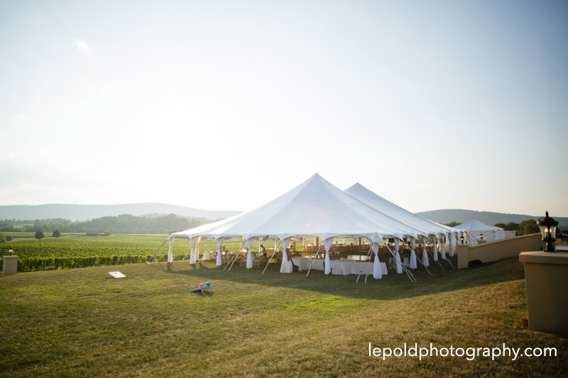 101 Breaux Vineyard Wedding Lepold Photography